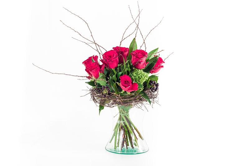 šopek ples vrtnic