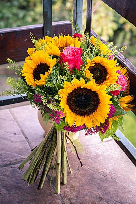 sopek iz soncnic-tvoje sonce-cvetlicarna-kavalir