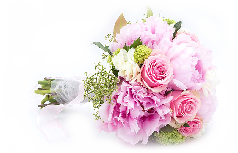 porocnisopek-cvetlicarna kavalir