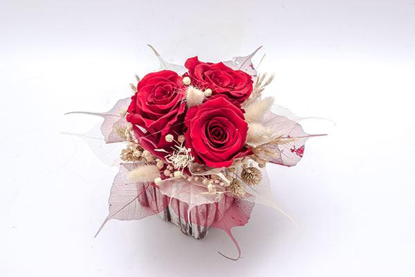 impregnirane vrtnice